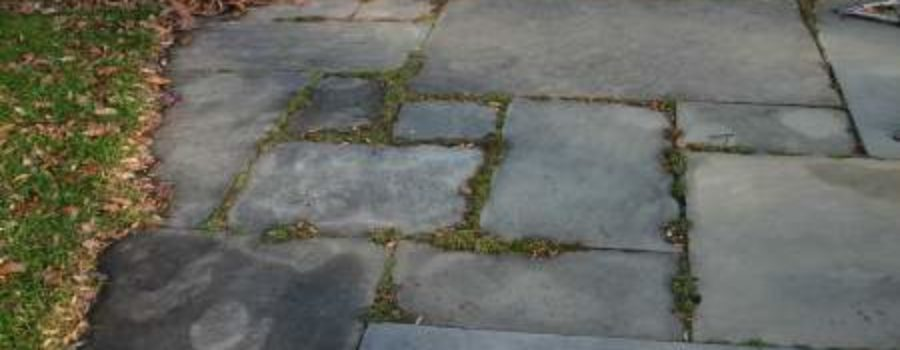 """The Flagstones: """"Looking Back"""""""